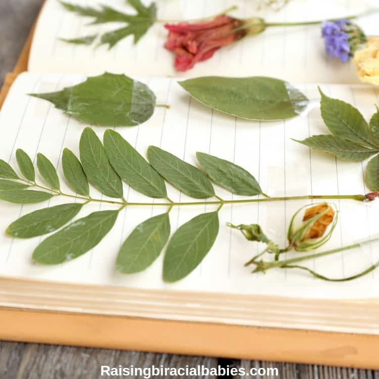 collecting nature items and pasting them to paper is one of many fun spring activities for kids